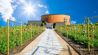 Dag Hammarskjölds Backåkra & Nordic Sea Winery