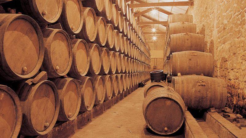 Vandring i Kantabrien & Rioja